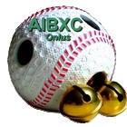 AIXBC.it